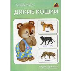 КАРТОЧКИ ПЕРВЫЕ УРОКИ ДИКИЕ КОШКИГБ00153